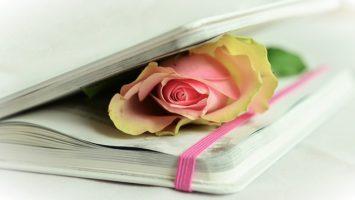 Jak se naučit básničku