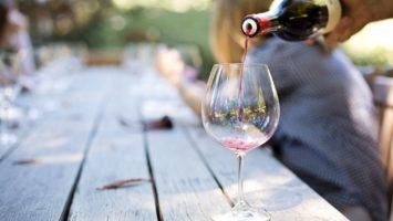 Poznávání a degustace vín